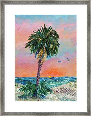 Tybee Palm At Sunrise Framed Print by Doris Blessington