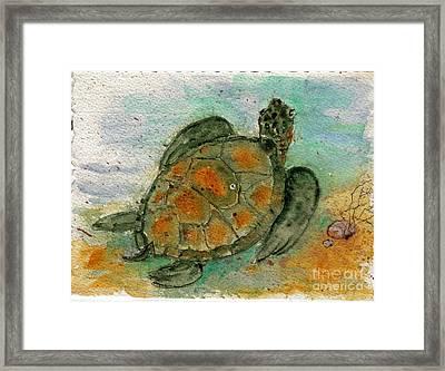Tybee Sea Turtle Framed Print