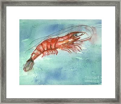 Tybee Wild Shrimp Framed Print