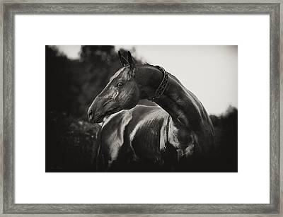 Tyllagush Framed Print by Artur Baboev