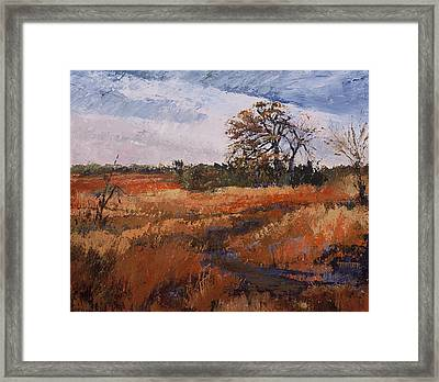 Typical Texas Field Framed Print by Jimmie Trotter