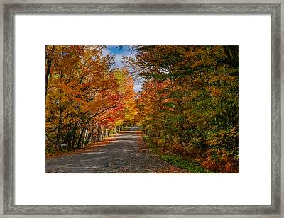 Typical Vermont Dirve - Fall Foliage Framed Print