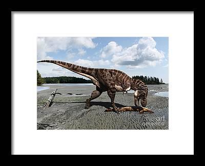 Predation Framed Prints