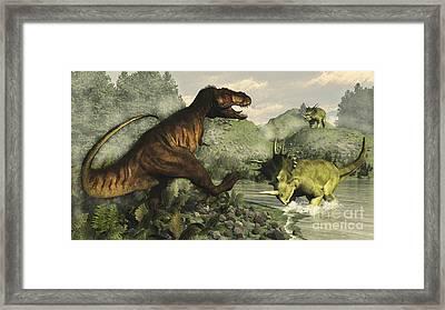 Tyrannosaurus Rex Fighting Framed Print