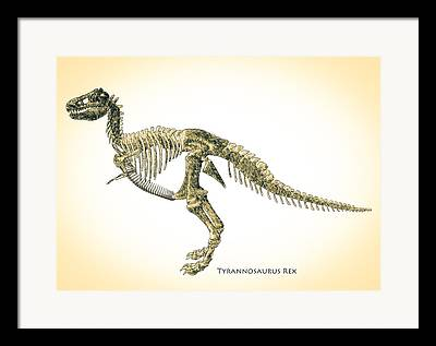 Theropod Framed Prints