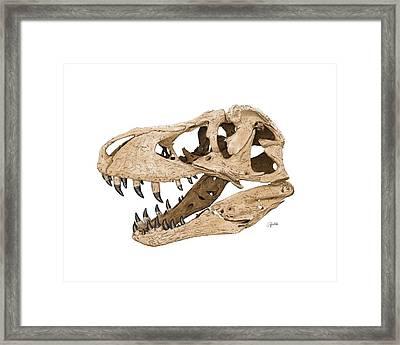 Tyrannosaurus Skull Framed Print