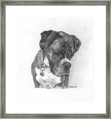 Tyson Framed Print by Marlene Piccolin