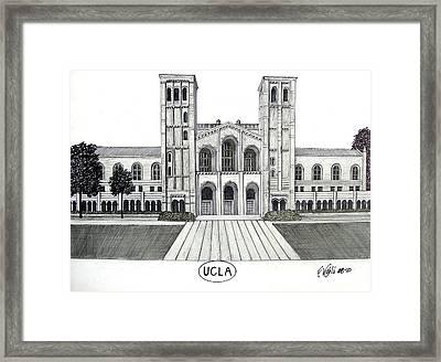 U C L A Framed Print