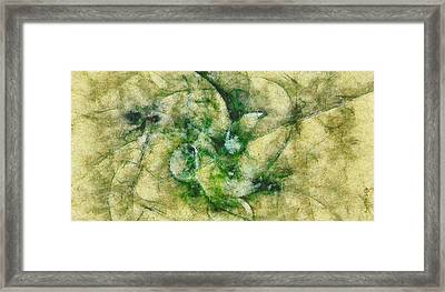 Uakari Proportion  Id 16101-023101-56610 Framed Print