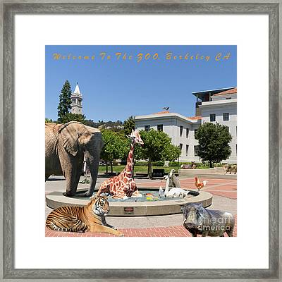 Uc Berkeley Welcomes You To The Zoo Please Do Not Feed The Animals Square And Text Framed Print