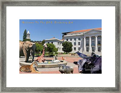 Uc Berkeley Welcomes You To The Zoo Please Do Not Feed The Animals With Text Framed Print by Wingsdomain Art and Photography