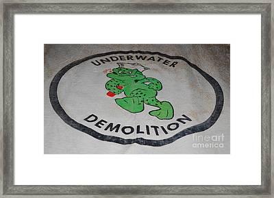 Udt Frogman Flag Framed Print