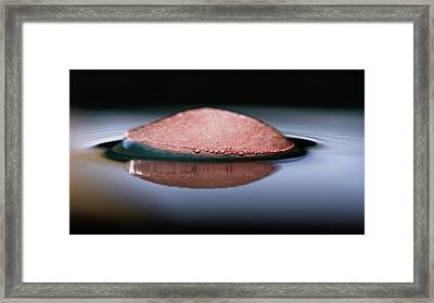 Framed Print featuring the photograph UFO by Rico Besserdich