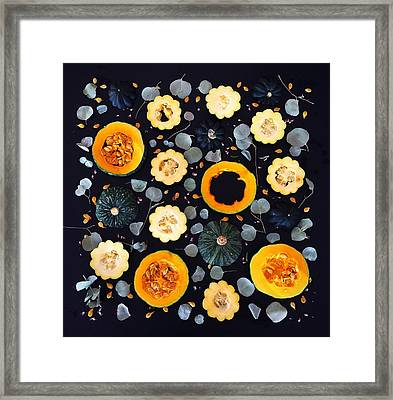 Squash Patterns Framed Print