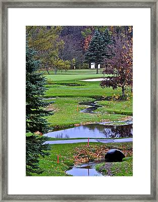 Uh Oh Framed Print by Frozen in Time Fine Art Photography
