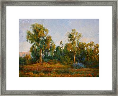Ulistac Natural Park  C Framed Print by Kelvin  Lei
