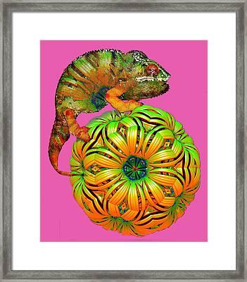 Ultra Chameleon Framed Print