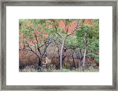 Framed Print featuring the photograph Uluru 05 by Werner Padarin
