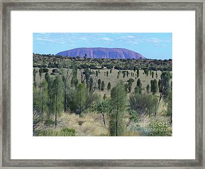 Uluru From The Bush Framed Print by Phil Banks