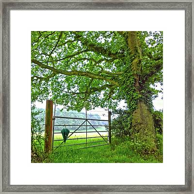 Umbrella At The Ready Framed Print by Anne Kotan