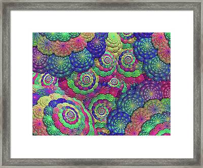 Umbrellas And Shells Framed Print