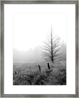 Unadorned Framed Print
