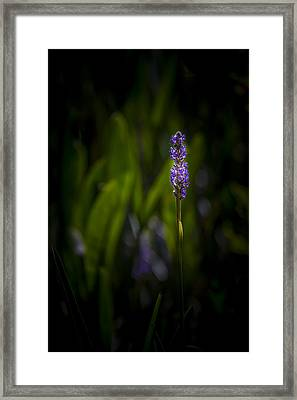 Unbroken Beauty Framed Print