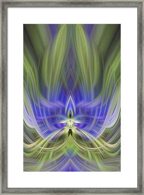 Unconventional  Blue Flower Framed Print by Linda Phelps