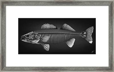 Undead Walleye Framed Print by Nick Laferriere