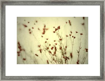 Framed Print featuring the photograph Undefined  by Mark Ross