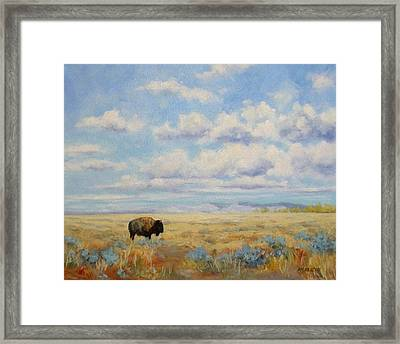 Under A Big Sky Framed Print by Debra Mickelson