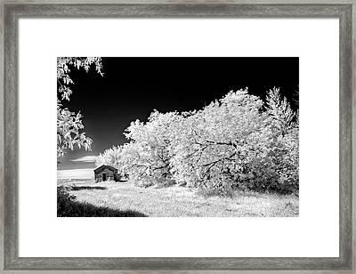 Framed Print featuring the photograph Under A Dark Sky by Dan Jurak