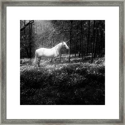 Under A Moonlit Sky  #fantasy #unicorn Framed Print by John Edwards