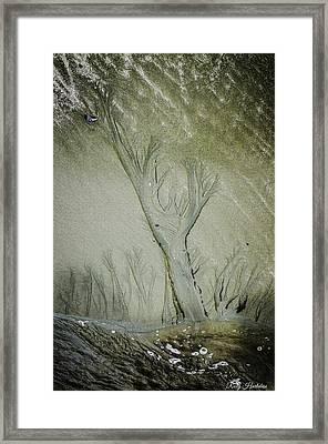 Under A Seashell Moon Framed Print