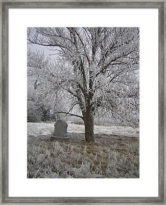Under A Shade Tree Framed Print by Deena Keller