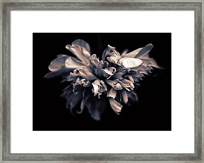 Under A Silvery Moon II Framed Print