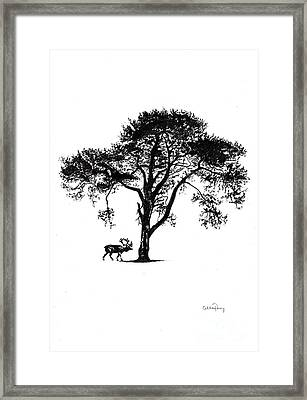 Under A Tree In Winter Framed Print by Callan Percy