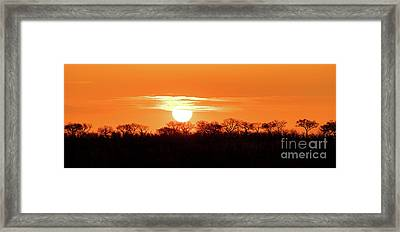Under African Skies Framed Print