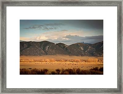 Under  Big Skies Of Montana Framed Print by Doug van Kampen, van Kampen Photography