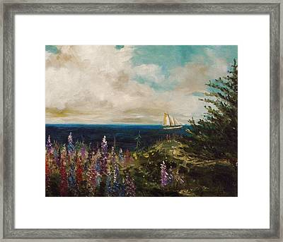 Under Full Sail Framed Print