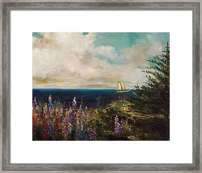 Under Full Sail Framed Print