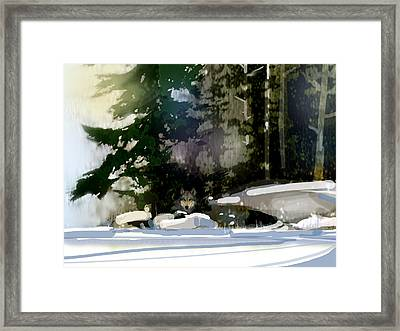 Under Surveillance Framed Print
