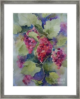 Under The Arbor Framed Print by Sandra Strohschein