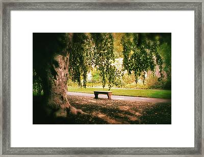 Under The Beech Tree Framed Print by Jessica Jenney
