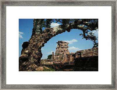 Under The Bodhi Tree Framed Print by Mohammed Nasir