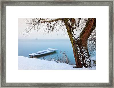 Under The Branch Framed Print