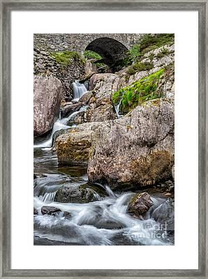 Under The Bridge Framed Print by Adrian Evans