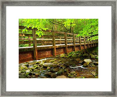 Under The Bridge Framed Print by Southern Photo
