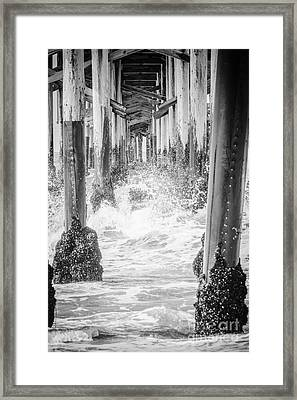 Under The California Pier Black And White Picture Framed Print