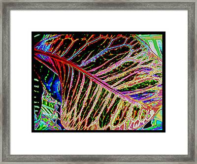 Framed Print featuring the photograph Under The Croton Leaf by Kate Word